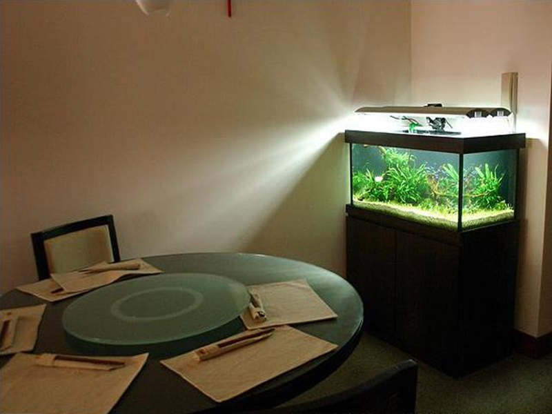 xử lý góc nhọn trong nhà bằng bể cá